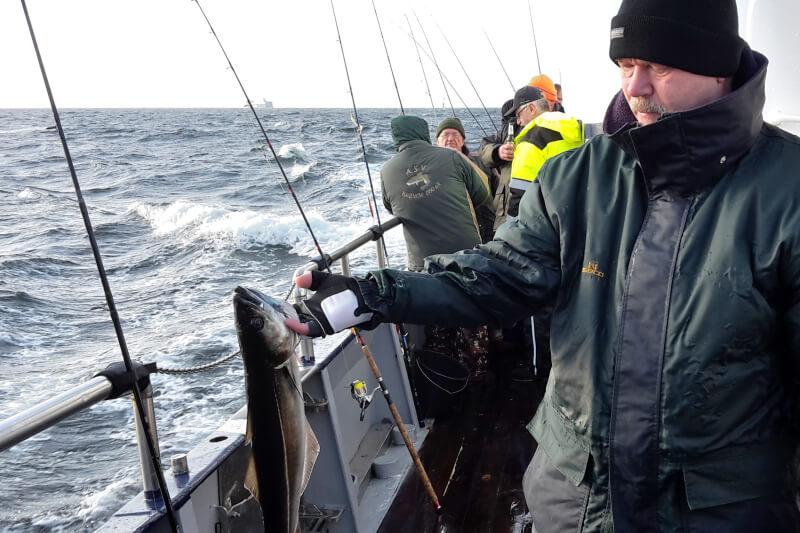 Angen am Reling von der MS Peter auf der Ostsee. Angler mit Fisch in der Hand